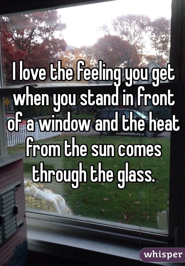 I love the feeling you get when you stand in front of a window and the heat from the sun comes through the glass.
