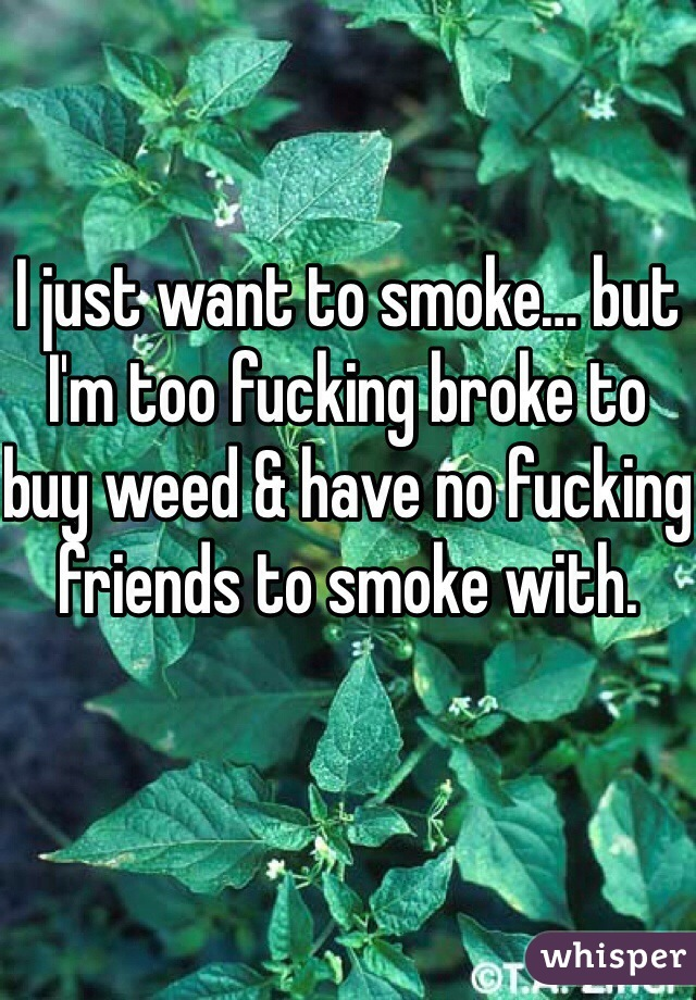 I just want to smoke… but I'm too fucking broke to buy weed & have no fucking friends to smoke with.