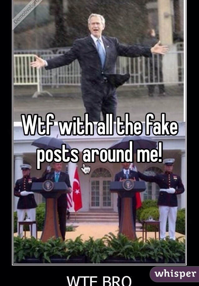 Wtf with all the fake posts around me!