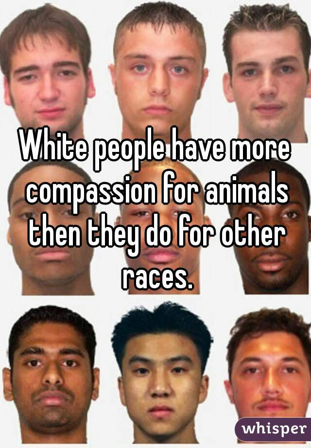 White people have more compassion for animals then they do for other races.