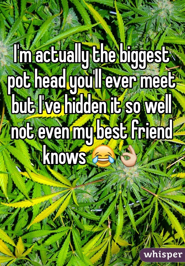 I'm actually the biggest pot head you'll ever meet but I've hidden it so well not even my best friend knows 😂👌