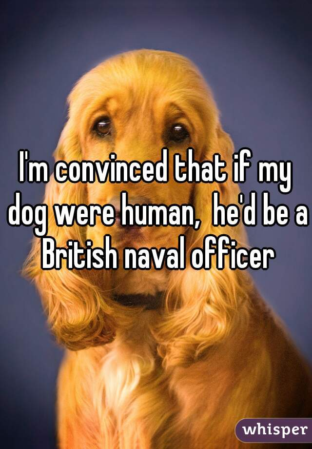 I'm convinced that if my dog were human,  he'd be a British naval officer