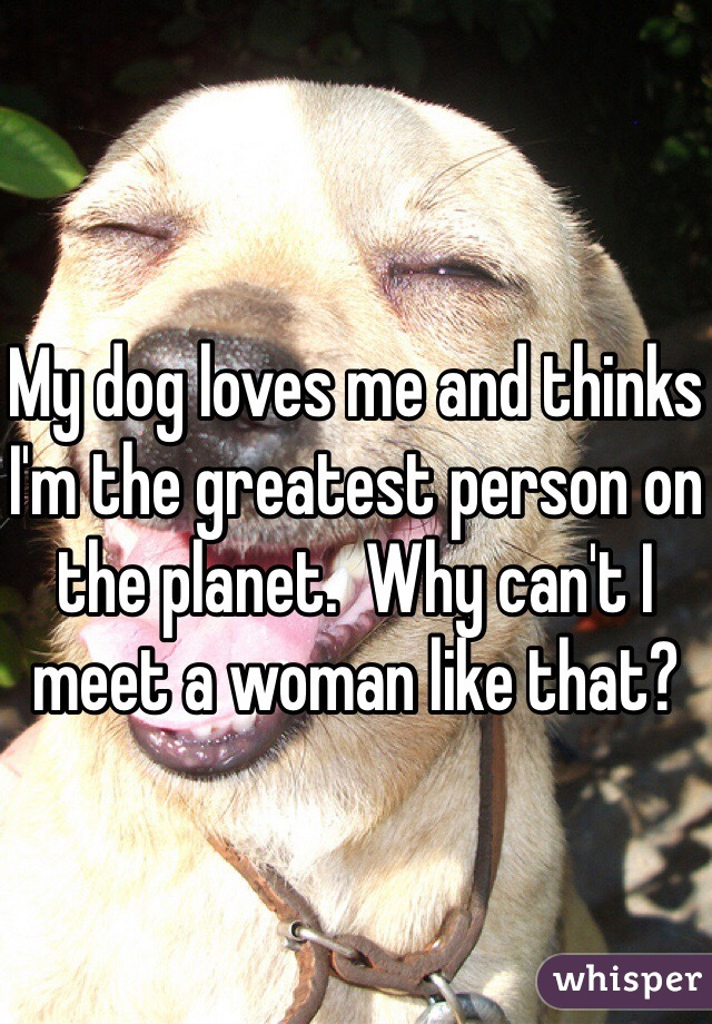 My dog loves me and thinks I'm the greatest person on the planet.  Why can't I meet a woman like that?