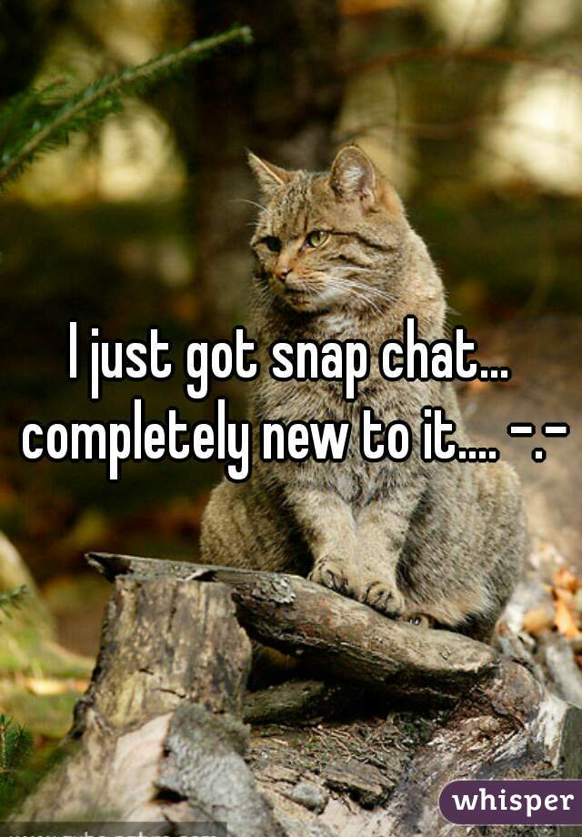 I just got snap chat... completely new to it.... -.-
