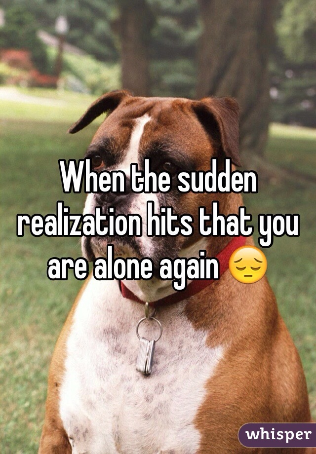 When the sudden realization hits that you are alone again 😔