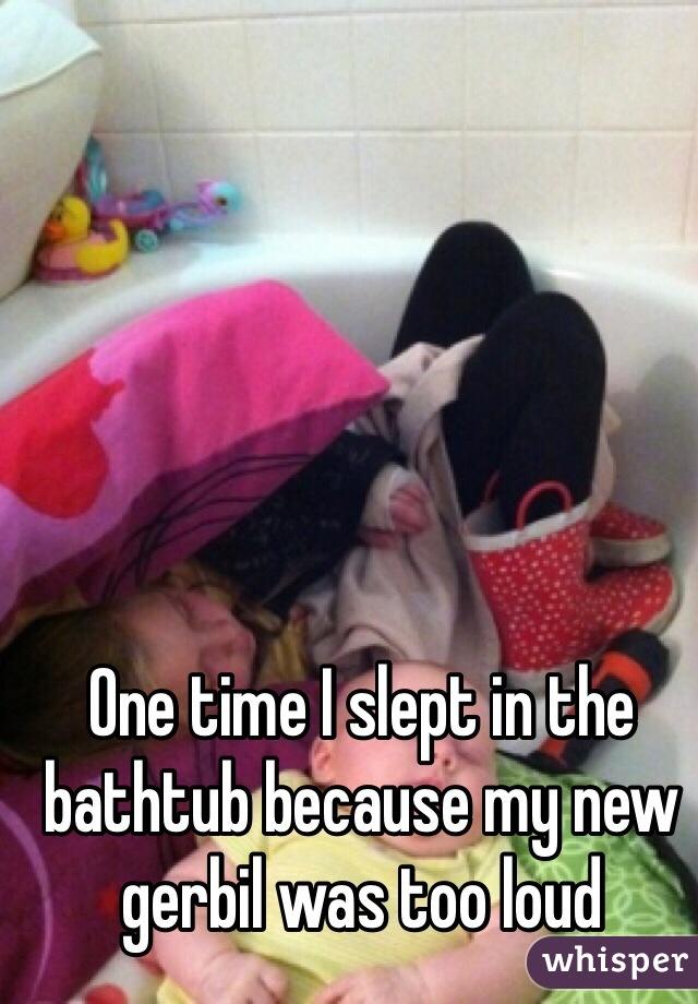 One time I slept in the bathtub because my new gerbil was too loud