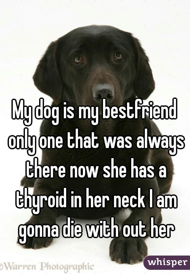 My dog is my bestfriend only one that was always there now she has a thyroid in her neck I am gonna die with out her