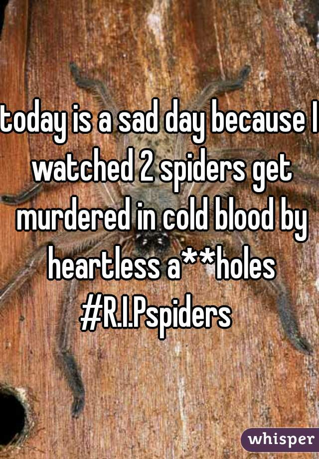 today is a sad day because I watched 2 spiders get murdered in cold blood by heartless a**holes #R.I.Pspiders