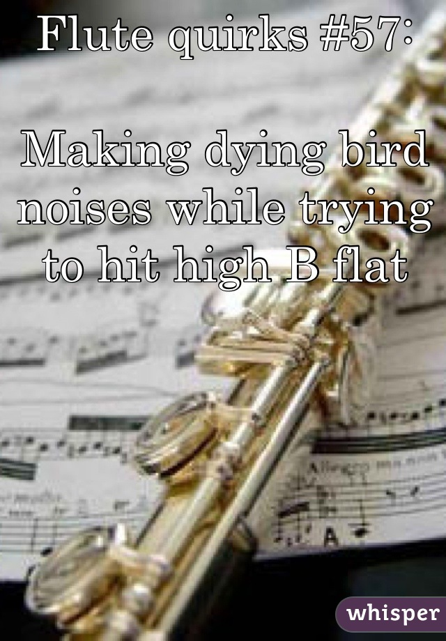 Flute quirks #57:  Making dying bird noises while trying to hit high B flat