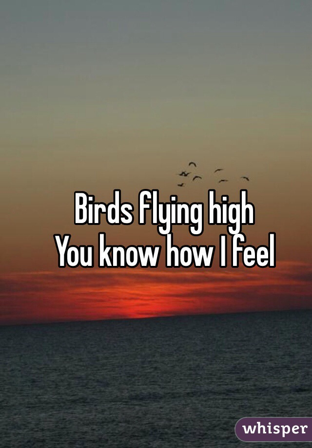 Birds flying high You know how I feel
