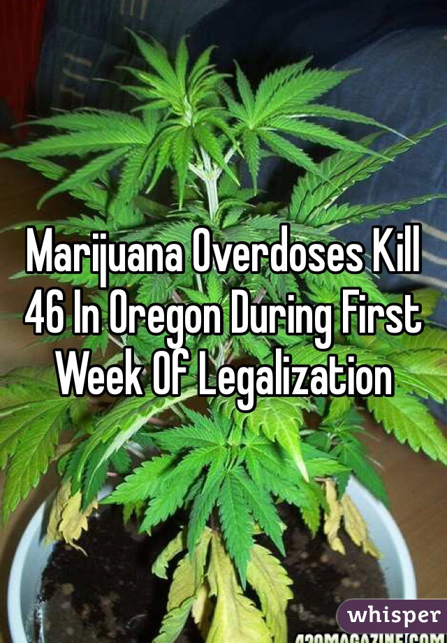 Marijuana Overdoses Kill 46 In Oregon During First Week Of Legalization