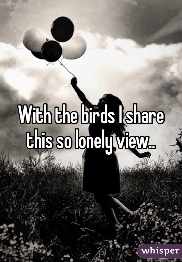With the birds I share this so lonely view..