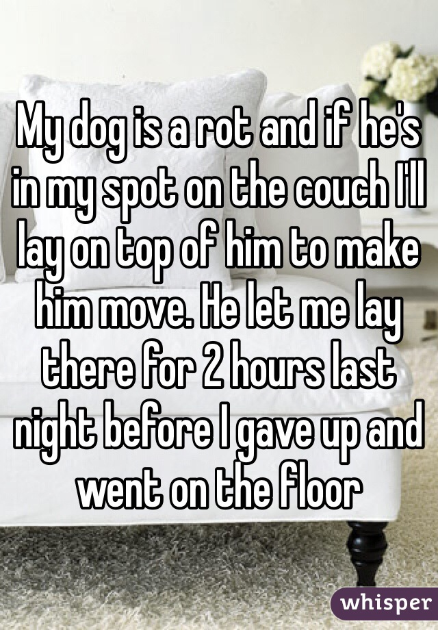 My dog is a rot and if he's in my spot on the couch I'll lay on top of him to make him move. He let me lay there for 2 hours last night before I gave up and went on the floor