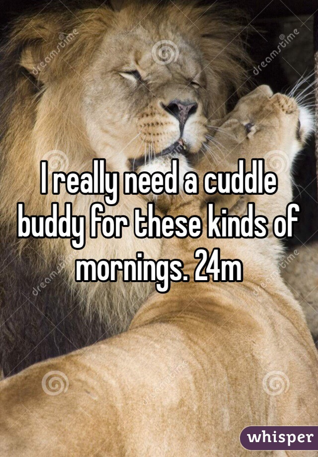 I really need a cuddle buddy for these kinds of mornings. 24m