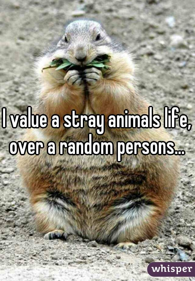 I value a stray animals life, over a random persons...