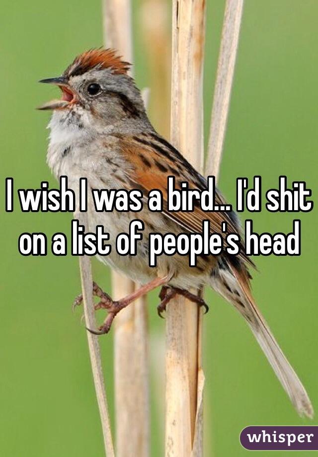 I wish I was a bird... I'd shit on a list of people's head