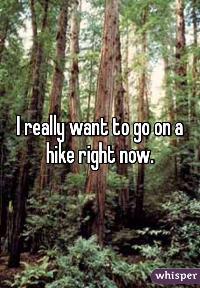 I really want to go on a hike right now.