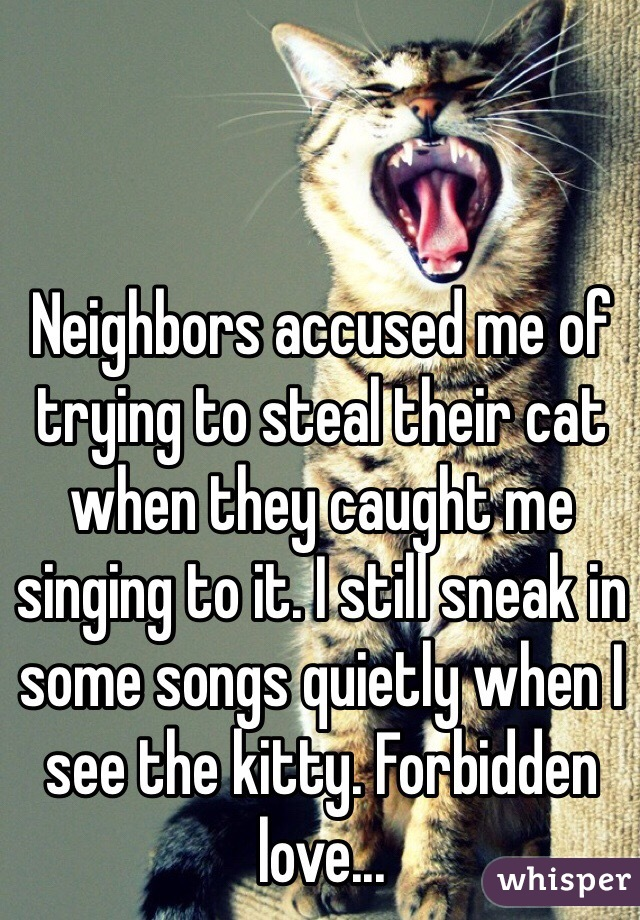 Neighbors accused me of trying to steal their cat when they caught me singing to it. I still sneak in some songs quietly when I see the kitty. Forbidden love...