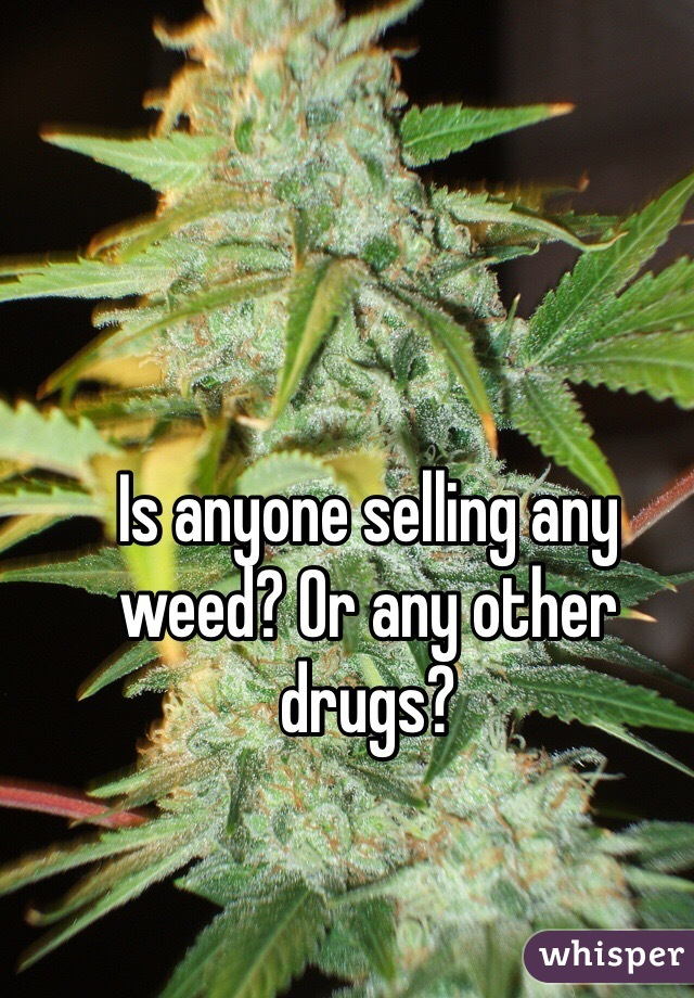 Is anyone selling any weed? Or any other drugs?