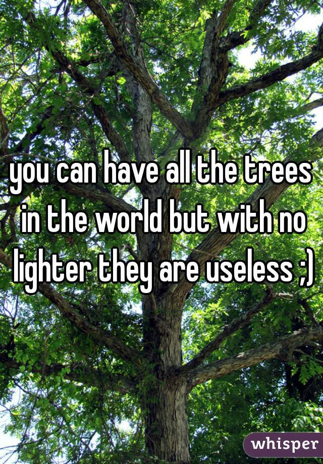 you can have all the trees in the world but with no lighter they are useless ;)