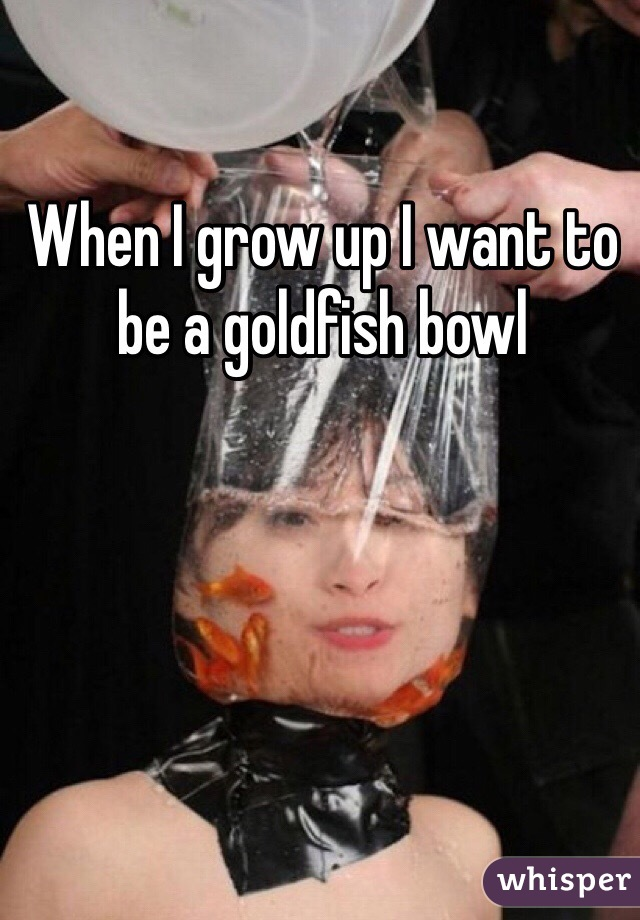 When I grow up I want to be a goldfish bowl