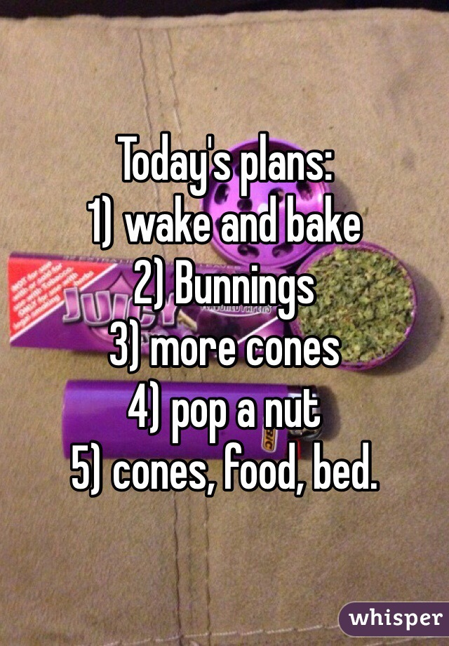 Today's plans: 1) wake and bake 2) Bunnings 3) more cones 4) pop a nut  5) cones, food, bed.