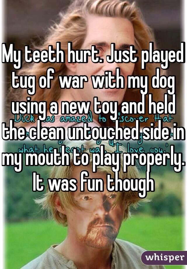 My teeth hurt. Just played tug of war with my dog using a new toy and held the clean untouched side in my mouth to play properly. It was fun though