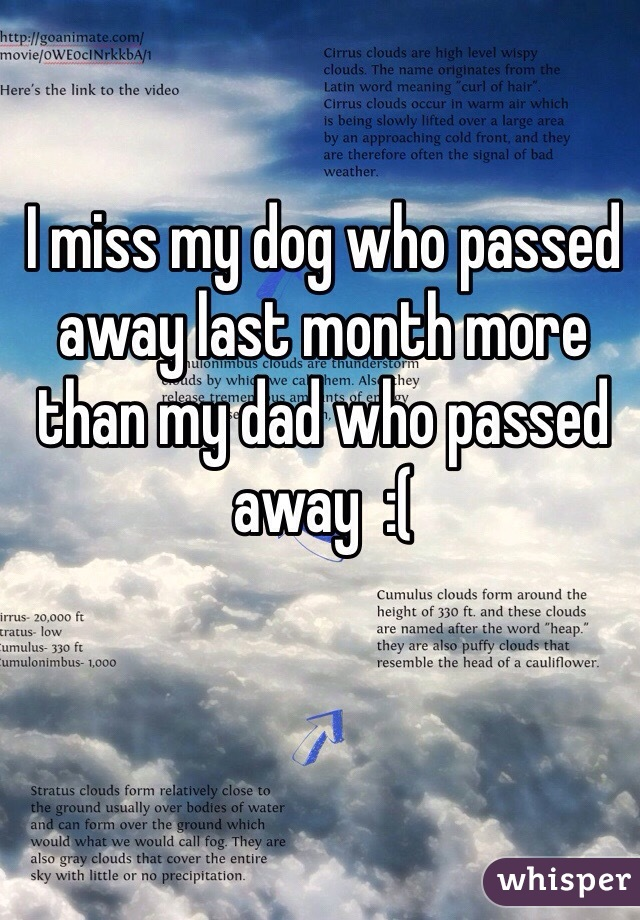 I miss my dog who passed away last month more than my dad who passed away  :(