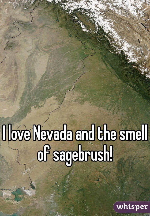 I love Nevada and the smell of sagebrush!