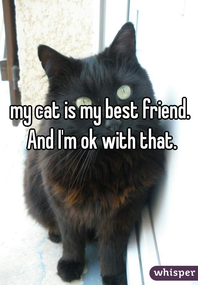 my cat is my best friend. And I'm ok with that.