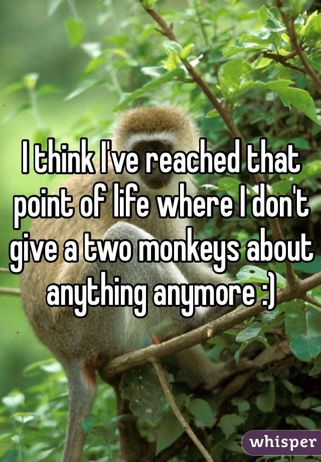 I think I've reached that point of life where I don't give a two monkeys about anything anymore :)
