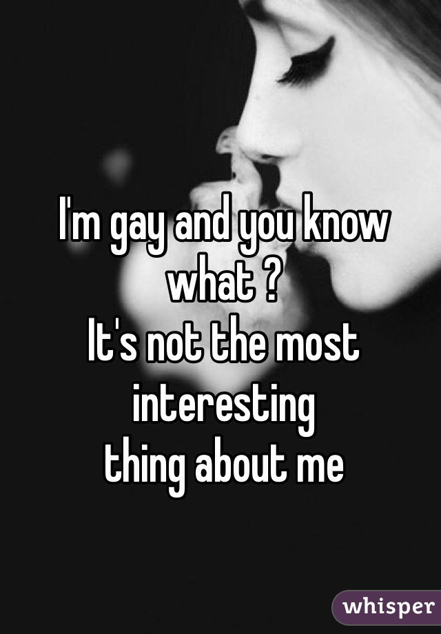 I'm gay and you know what ? It's not the most interesting  thing about me