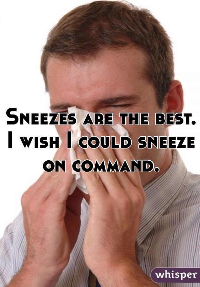 Sneezes are the best. I wish I could sneeze on command.
