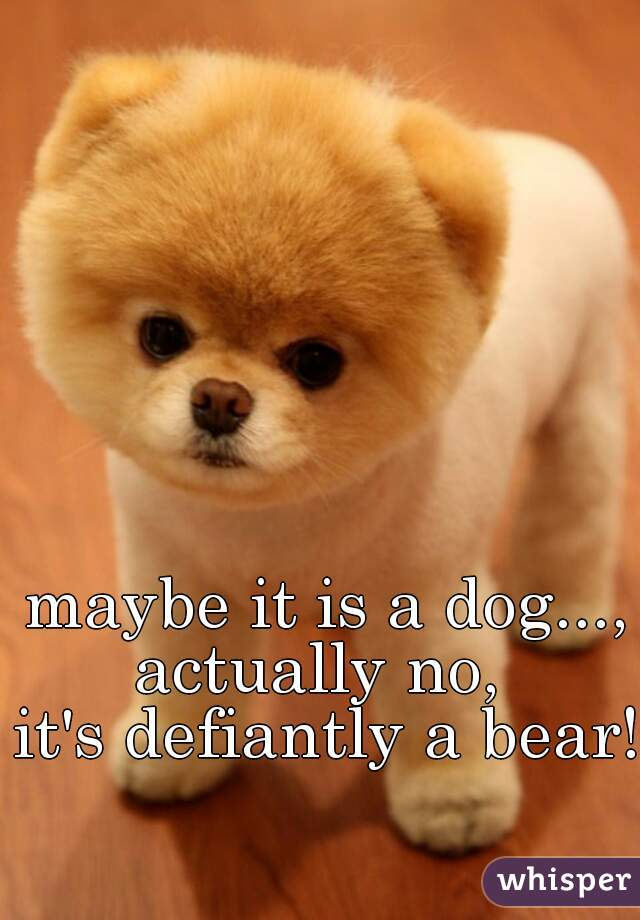 maybe it is a dog..., actually no,  it's defiantly a bear!