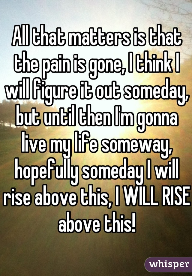 All that matters is that the pain is gone, I think I will figure it out someday, but until then I'm gonna live my life someway, hopefully someday I will rise above this, I WILL RISE above this!