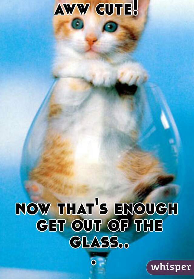 aww cute!            now that's enough  get out of the glass...