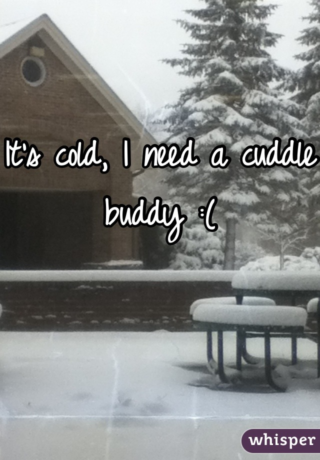 It's cold, I need a cuddle buddy :(