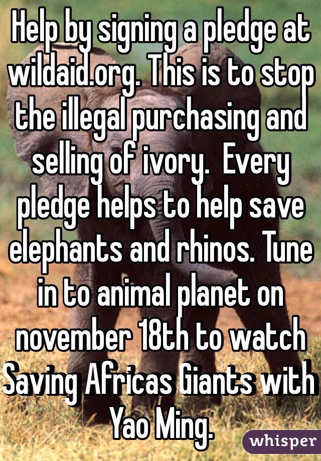 Help by signing a pledge at wildaid.org. This is to stop the illegal purchasing and selling of ivory.  Every pledge helps to help save elephants and rhinos. Tune in to animal planet on november 18th to watch Saving Africas Giants with Yao Ming.