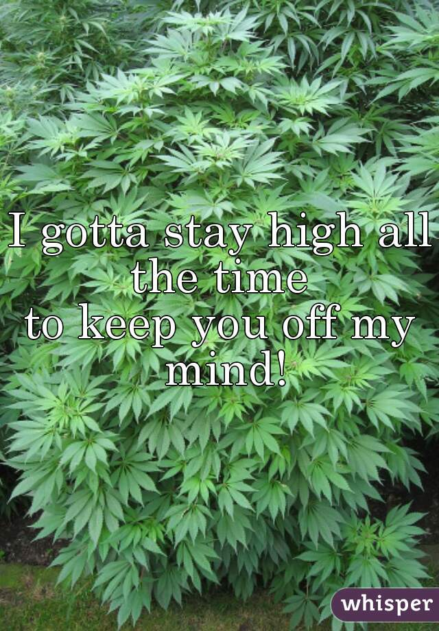 I gotta stay high all the time  to keep you off my mind!
