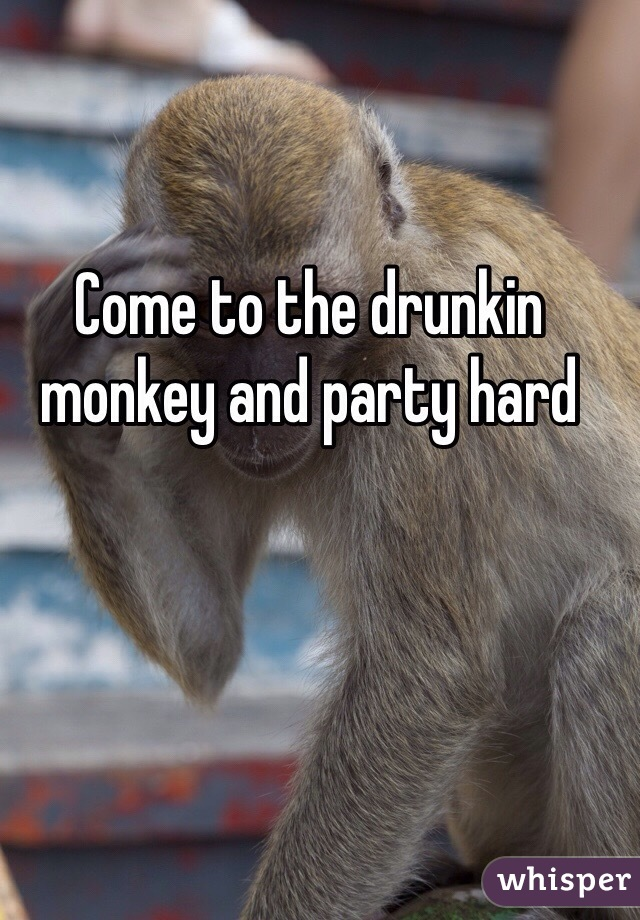 Come to the drunkin monkey and party hard