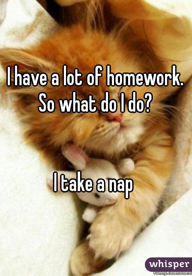 I have a lot of homework. So what do I do?    I take a nap