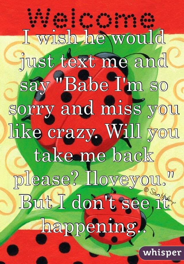 I Wish You Would Take Me Back