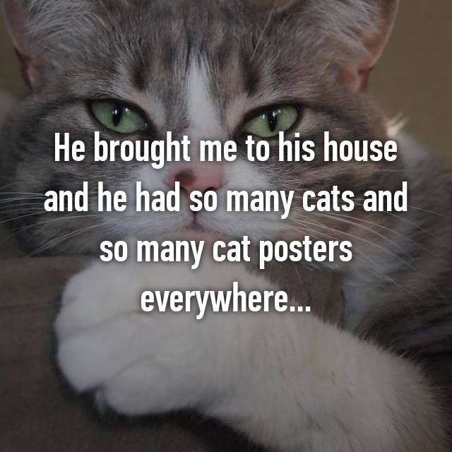He brought me to his house and he had so many cats and so many cat posters everywhere...