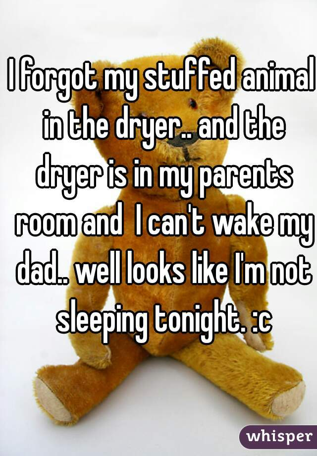 I forgot my stuffed animal in the dryer.. and the dryer is in my parents room and  I can't wake my dad.. well looks like I'm not sleeping tonight. :c