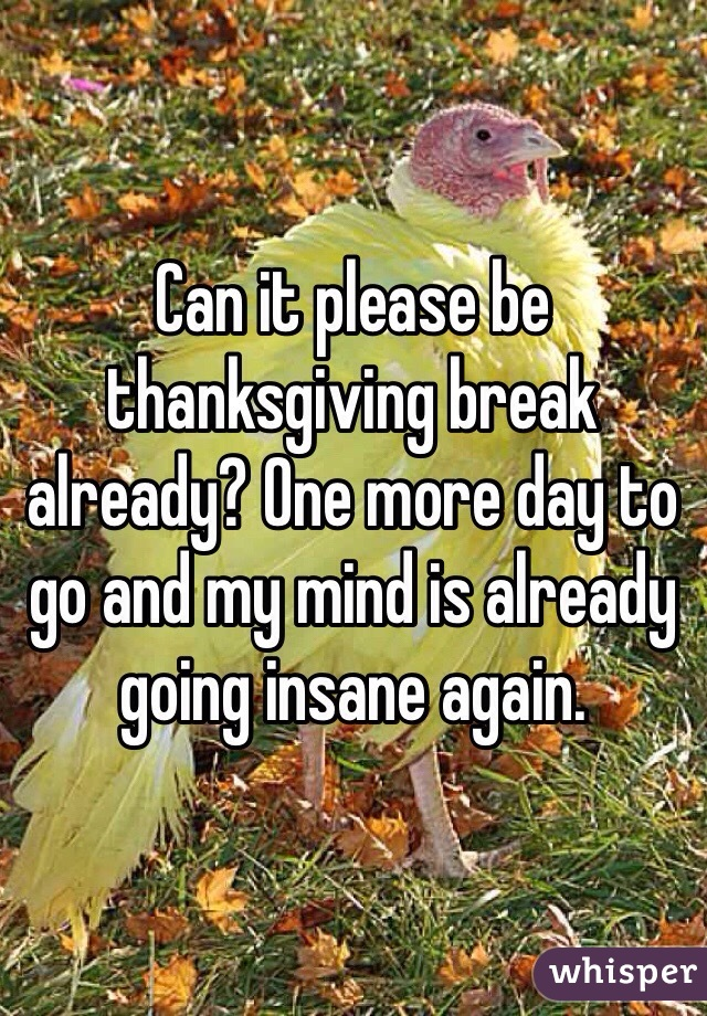 Can it please be thanksgiving break already? One more day to go and my mind is already going insane again.