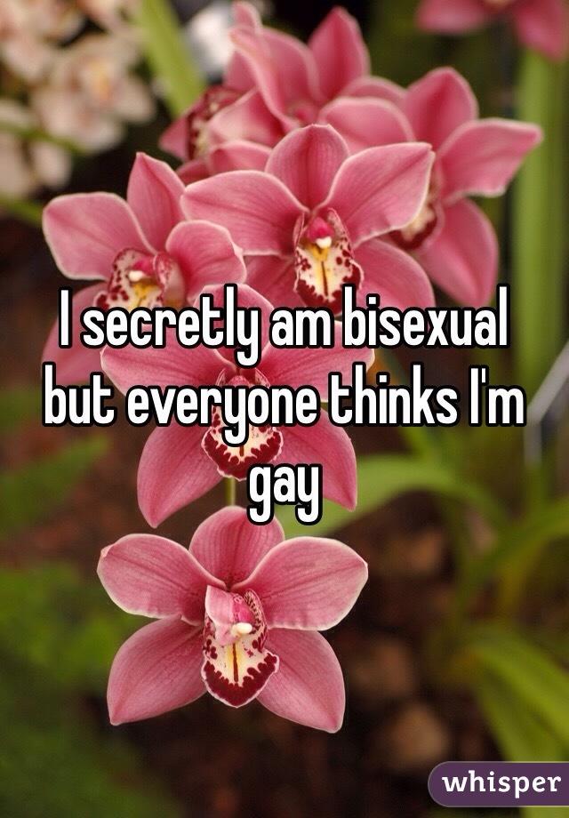 I secretly am bisexual  but everyone thinks I'm gay