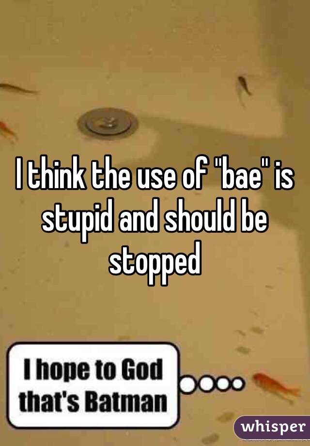 """I think the use of """"bae"""" is stupid and should be stopped"""
