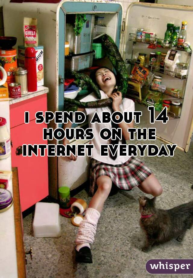 i spend about 14 hours on the internet everyday