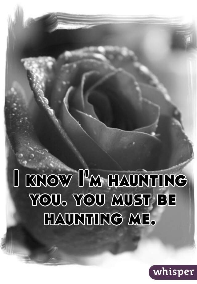 I know I'm haunting you. you must be haunting me.