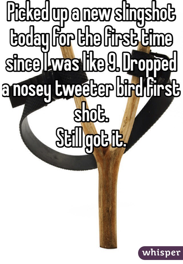 Picked up a new slingshot today for the first time since I was like 9. Dropped a nosey tweeter bird first shot.  Still got it.